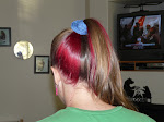 Yes, Pink hair.  :-)