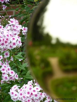 Blumen, Spiegelung, Reflektion, Kugel, Botanischer Garten, Hamburg