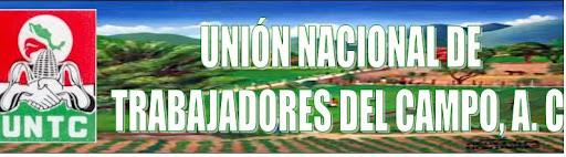 UNION NACIONAL DE TRABAJADORES DEL CAMPO A. C.