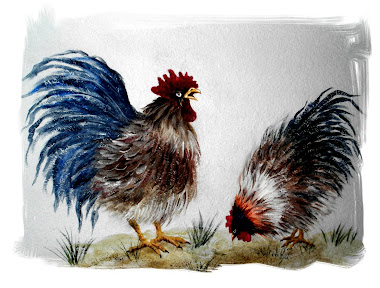 Wall Art Chickies