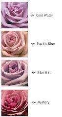 De las rosas, la azul