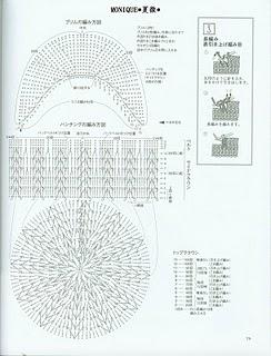 Фото цветка декабриста и его разновидности