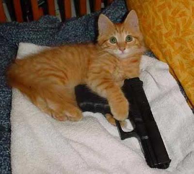 Un Glock, c'est bien. Mais faut pas avoir de chien ! Cat+carries+a+Glock