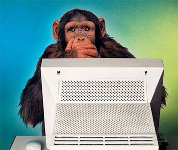 Monkey-Computer