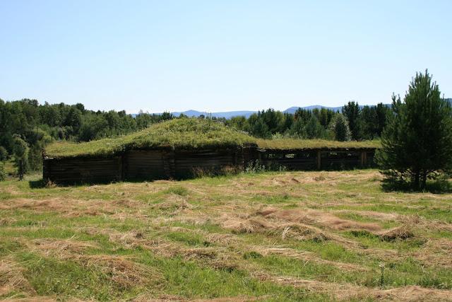Дом шамана трава на крыше