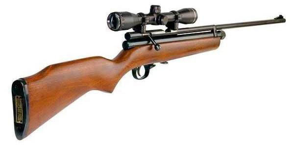 22+rifle+with+scope