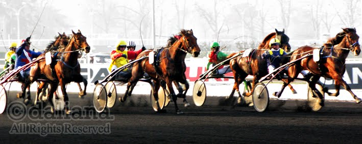 vincennes horse racing