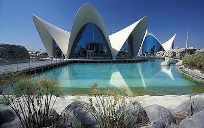 Arquitectura espectacular oceanografico de valencia for Oceanografico valencia