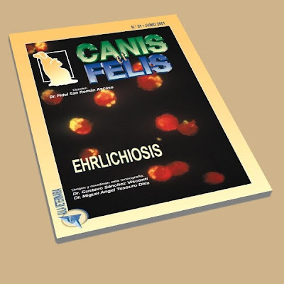 Canis et Felis: Ehrlichiosis