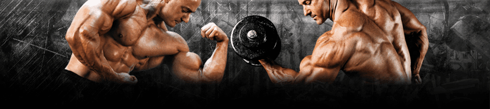 Steroids for Sale Guide | Legit RoidsMaLL Supplier