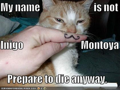 funny-pictures-mustached-princess-bride-cat.jpg