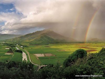 Amazing Rainbows