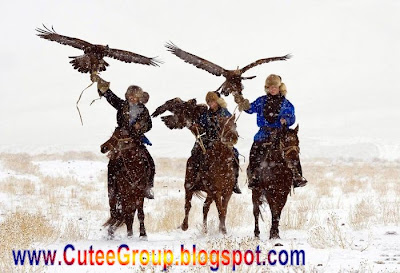 Golden Eagle Hunting in Kazakhstan