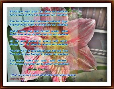 Roman Urdu Poetry
