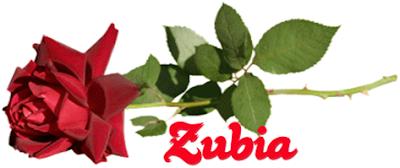 www.Meri-Tanhaee.blogspot.com
