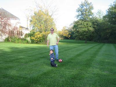 lawn doctor organic lawn care