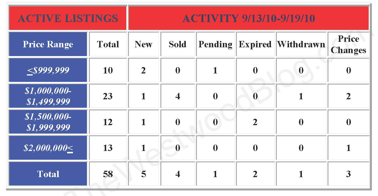 weekly activity report template .