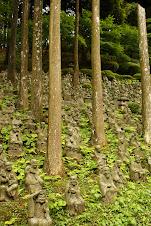 500 Buddhas in Karatsu
