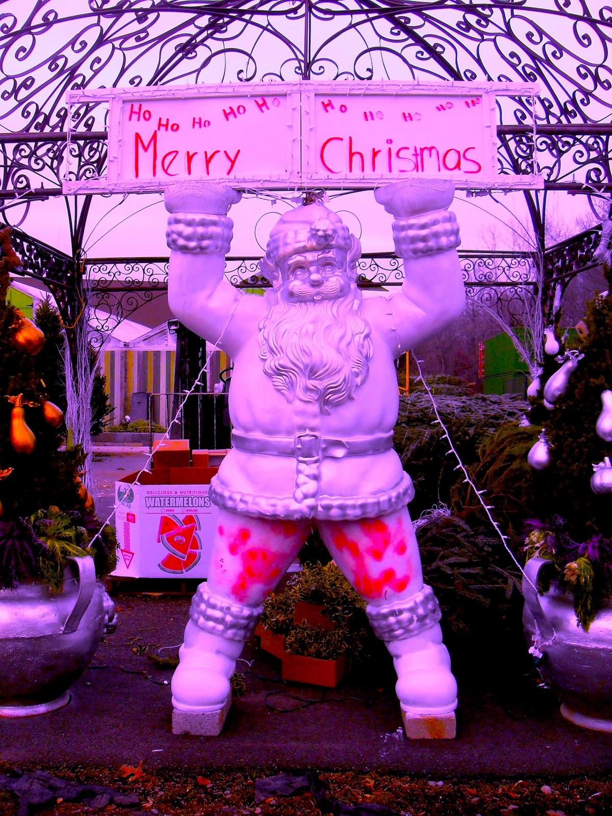 http://1.bp.blogspot.com/_n5KMEaGMNoA/TQTCNkiXOuI/AAAAAAAACsA/rYllbSWiqPo/s1600/Dragonfly+Farms+HAMILTON+NEW+JERSEY+Christmas+Decorations+I.JPG