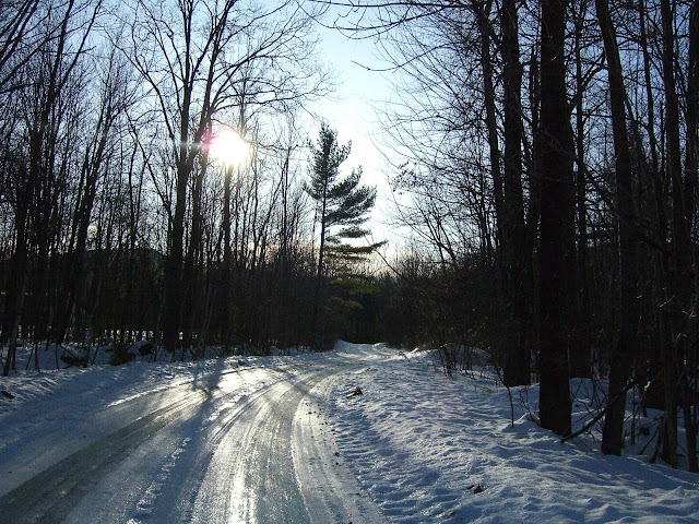Icy road through the woods in New Hampshire.