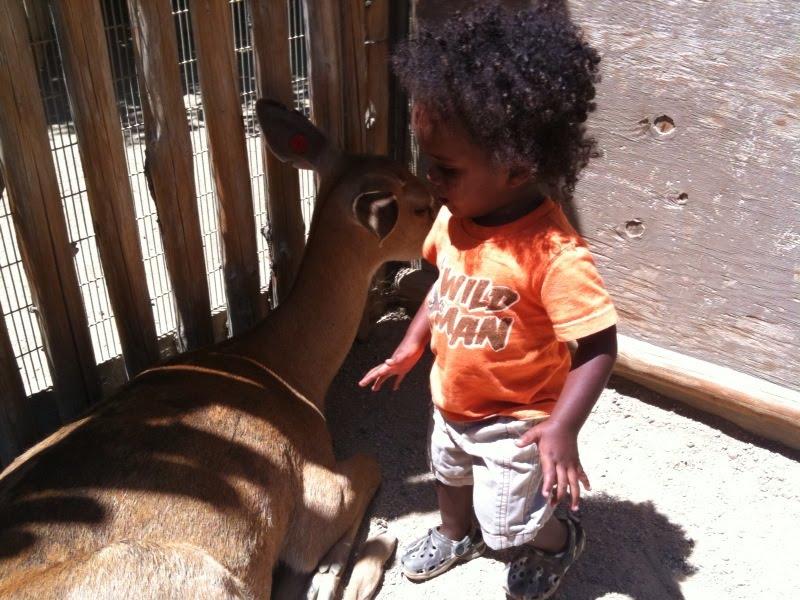 [Marley+with+Deer.htm]