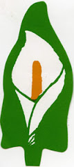 Honour Irelands patriot dead wear an Easter Lily