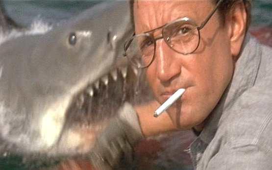 [tiburon]