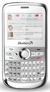CSL Blueberry 5800-1