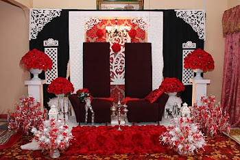 Pelamin Papa Romy (Single Panel with 'Kerawang')