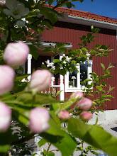 Mitt röda hus med vita knutar
