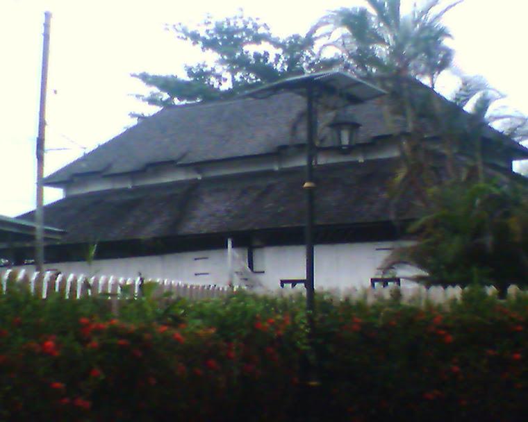 Kubu Lily di Betong.