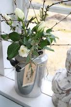 Vita rosor med körsbärskvistar..