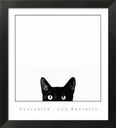 Resultado de imagen para La curiosidad mato al gato/fotos/ilustraciones
