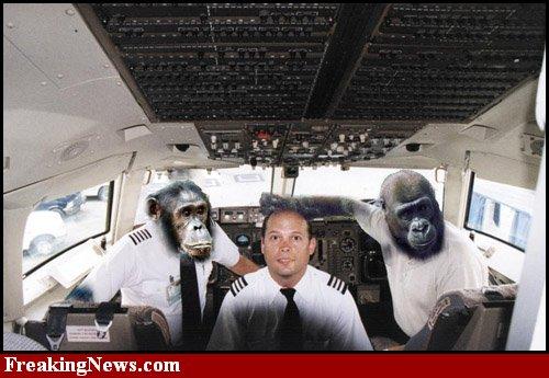 http://1.bp.blogspot.com/_nCYfM9Z6wqw/S-NpsvtJNPI/AAAAAAAAASg/VnmgiAyfE7A/s1600/Monkey-Airplane--25695.jpg