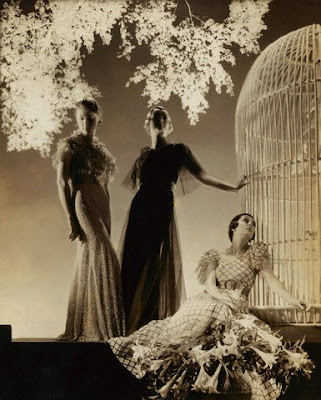Iconic fashion photography momentsIconic Fashion Images