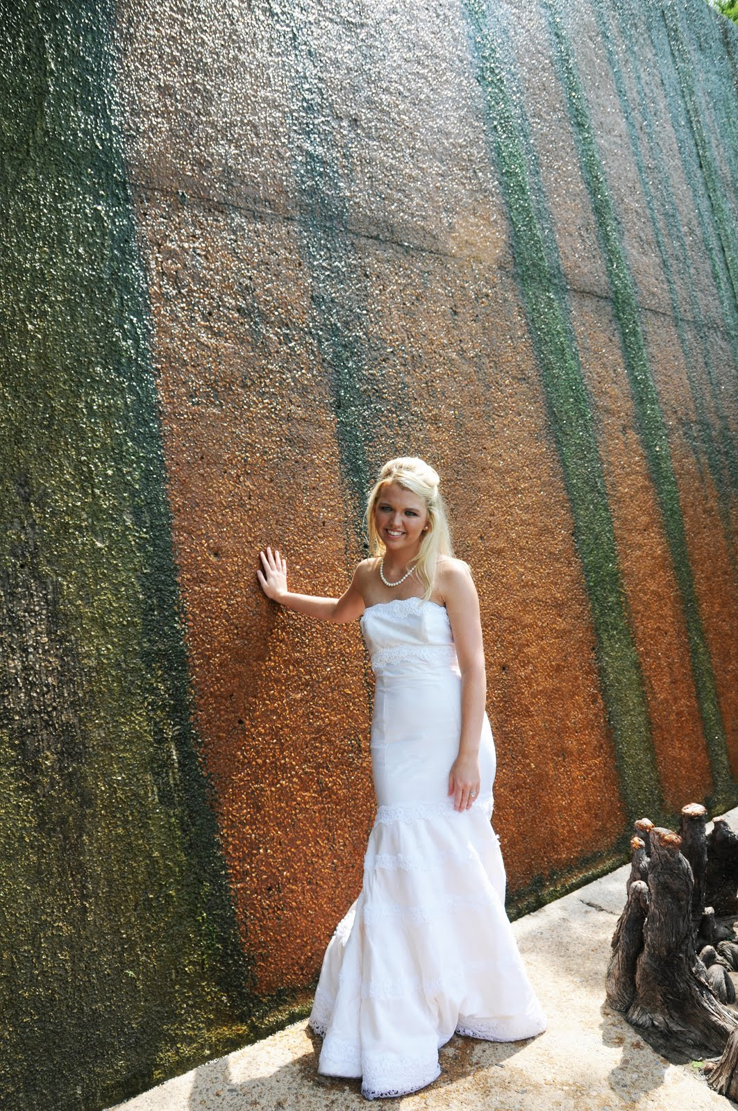 Hensley Photography Trash The Dress At The Fort Worth Water Gardens