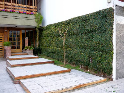 Jardín acceso edificio