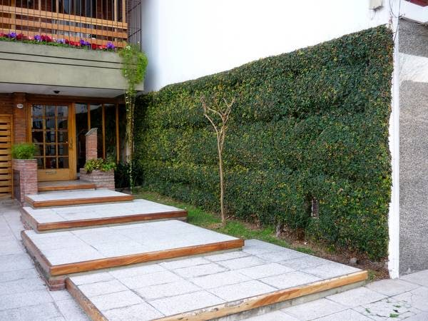 arquitectura de casas jardines peque os en entradas a