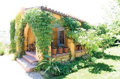 Sombra vegetación en una casa