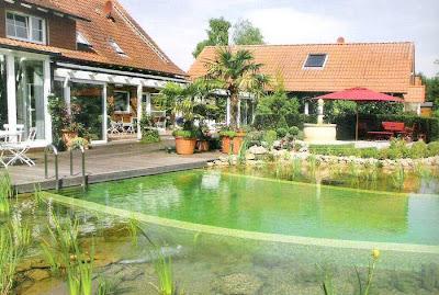 Lago piscina