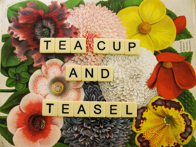teacup and teasel