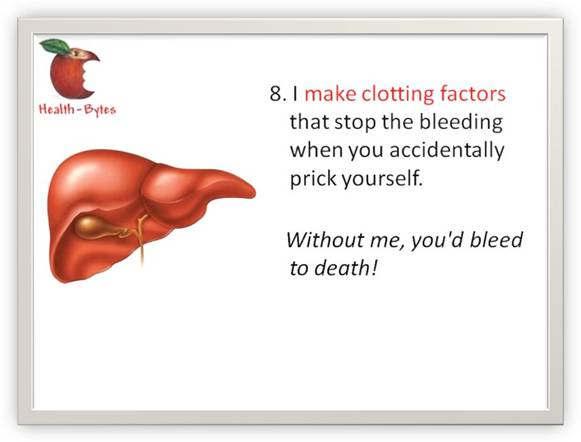 Your silent partner & ever loving lover -- liver