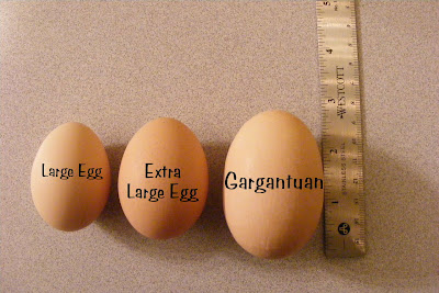 How long are eggs good for after sell by date in Wellington