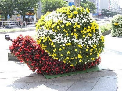 Amazing Garden Designing Art