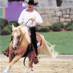Conduire son cheval à une main