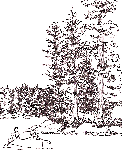ink drawing of couple canoeing near wooded shoreline