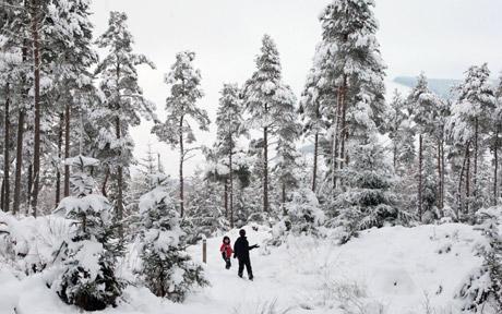 [SnowScotland122509UKTelegraphCheskinPA.jpg]