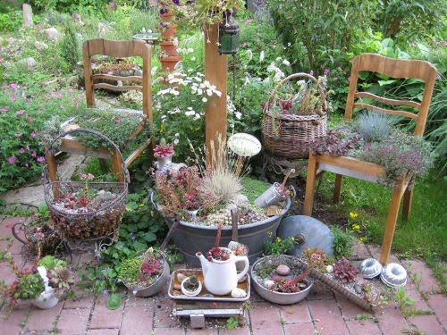 Garten impressionen august 2010 - Steingartenpflanzen anlegen ...