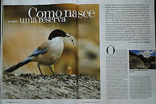 Revista Noticias Magazine