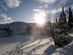 Sol y nieve en los sabinares